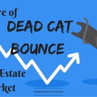 Beware of Dead Cat Bounce in Property Market